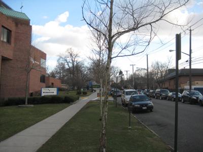 Staten Island Community