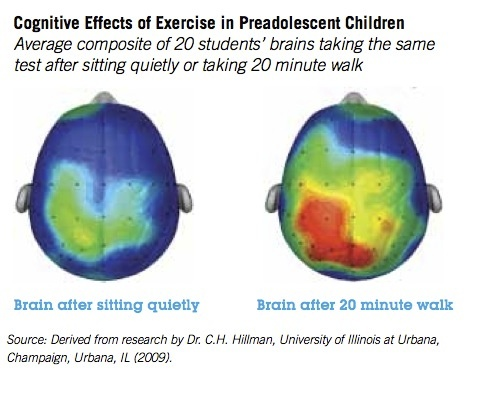 Now Reading: Walking not only rearranges your neurochemistry (I knew it), it grows your brain