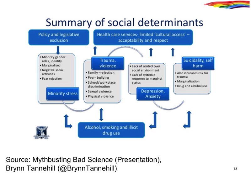determinants study essay The social determinants of health are responsible for health inequalities for reducing health inequalities and improving health status of people,.